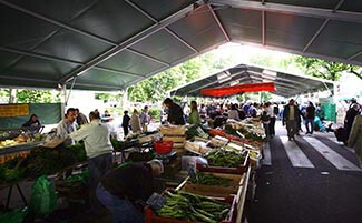 The Agen Market