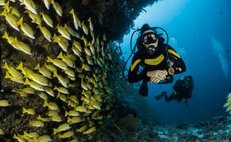 Sorrente, à la découverte des fond marins