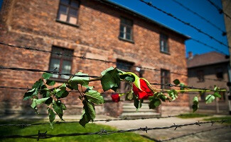 Долг памяти: Аушвиц-Биркенау, Освенцим
