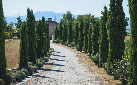 Zornitza Family Estate:|Enotourism in Bulgaria