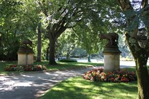 La Louve Garden, Bonnieux
