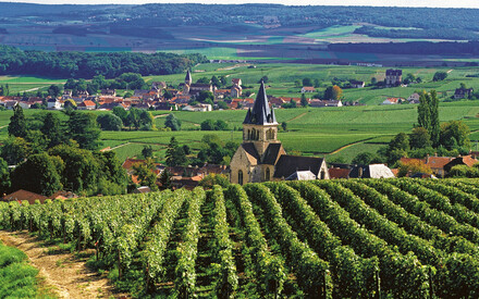 The wine route to Champagne