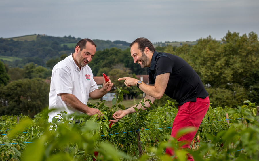 Meet local producers