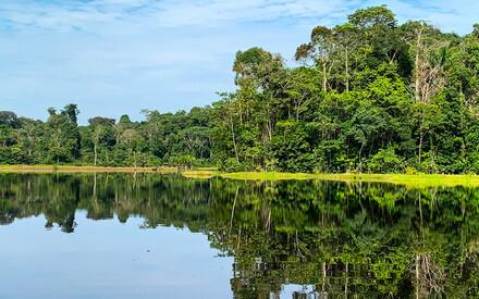 Dream cruise on the Amazon  aboard the Delfin