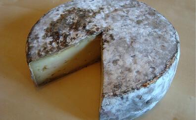 Nut cakes and Tome des Bauges