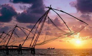 Die Fischer bewundern, wie sie ihre Senknetze an Land ziehen, Fort Cochin