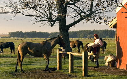 La Bamba de Areco: | Luxurious Living in Gaucho Country